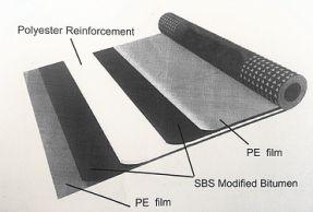 membrane explained.jpg