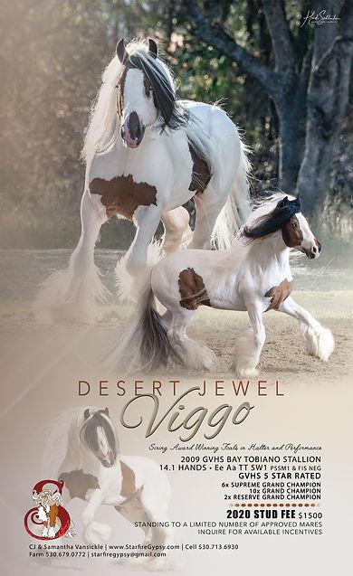 Desert Jewel Viggo 2020 Season Ad RGB.jp