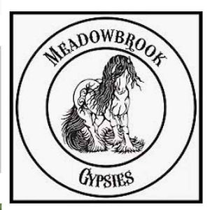 meadowbrook platinum.jpg