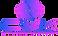 CWK Virtual Entertainment Logo.png