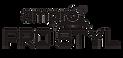 Ampro Logo.png
