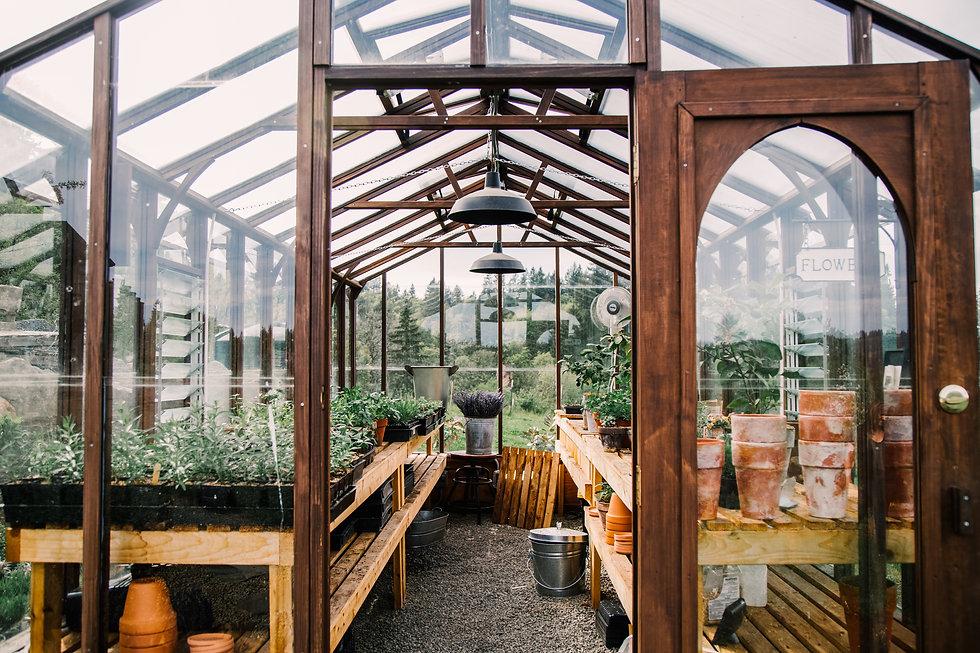 Greenhouse1-1.jpg