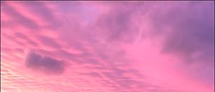 Screen Shot 2021-03-25 at 12.48.33 PM.pn