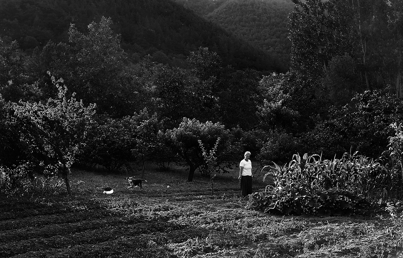 Kırsal Düşü - 3