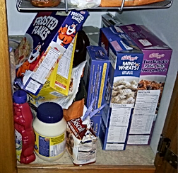 Cereal Before Organization