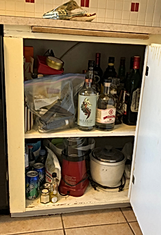 1950's Kitchen Cabinet_edited.png