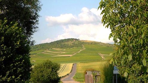 Zotzenheim Zotzenheimer Horn Naturschutzgebiet Hügelland Rheinhessen Weingut Siebenhof Weindorf