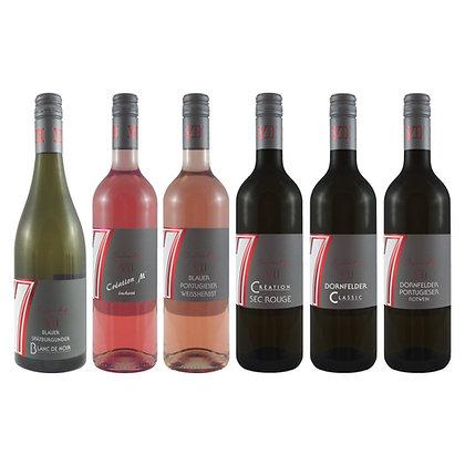 Pro6 Probierpaket blaue Traube Wein Weinprobe zu Hause Broschüre geleitet Weingut Siebenhof Zotzenheim Rheinhessen Qualität