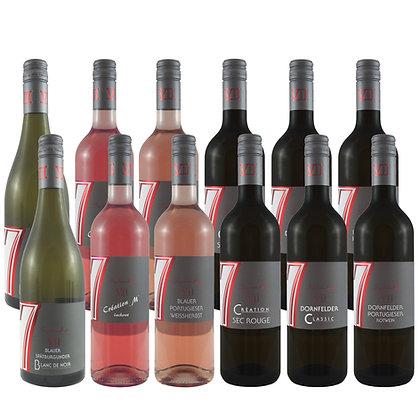 Pro6a Probierpaket blaue Traube Wein Weinprobe zu Hause Broschüre geleitet Weingut Siebenhof Zotzenheim Rheinhessen Qualität