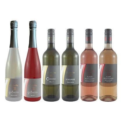 Pro2 Probierpaket Sommer 6 Wein Weinprobe zu Hause Broschüre geleitet Weingut Siebenhof Zotzenheim Rheinhessen Qualität