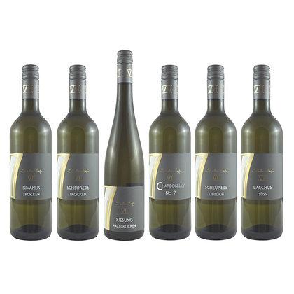 Pro4 Probierpaket Weißwein 6 Wein Weinprobe zu Hause Broschüre geleitet Weingut Siebenhof Zotzenheim Rheinhessen Qualität