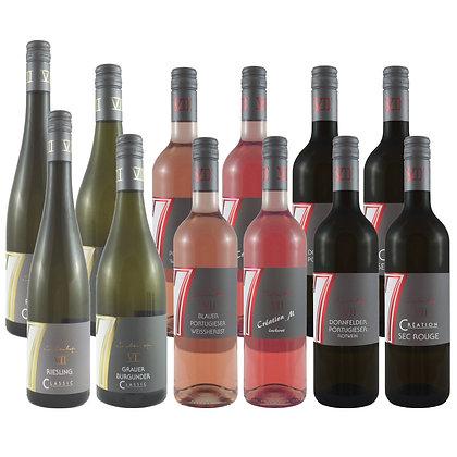 Pro1a Probierpaket Frühling 12 Wein Weinprobe zu Hause Broschüre geleitet Weingut Siebenhof Zotzenheim Rheinhessen Qualität