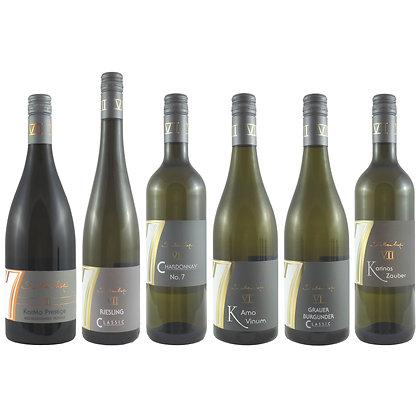 Pro5 Probierpaket Weißwein 6 exklusiv Weinprobe zu Hause Broschüre geleitet Weingut Siebenhof Zotzenheim Rheinhessen Qualität