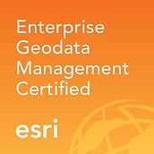 Enterprise Geodata Mgmt.jpg
