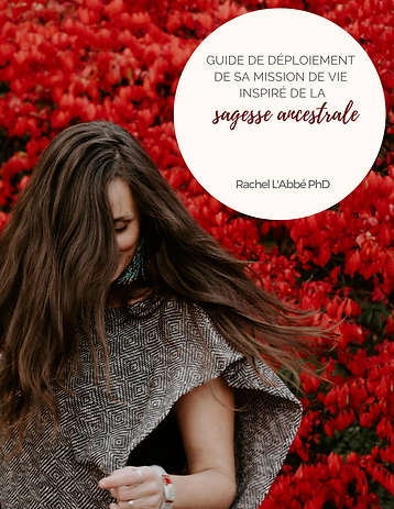 Livre_numérique_pour_déployer_sa_mission