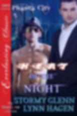 5. NIGHT.jpg