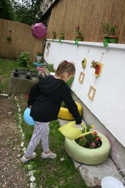 Udăm plantele din grădina noastră