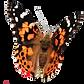 Fluture decupat 1.png