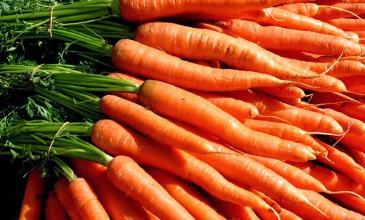 Feathered carrots