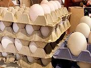 Nobbys Farm Shop Eggs