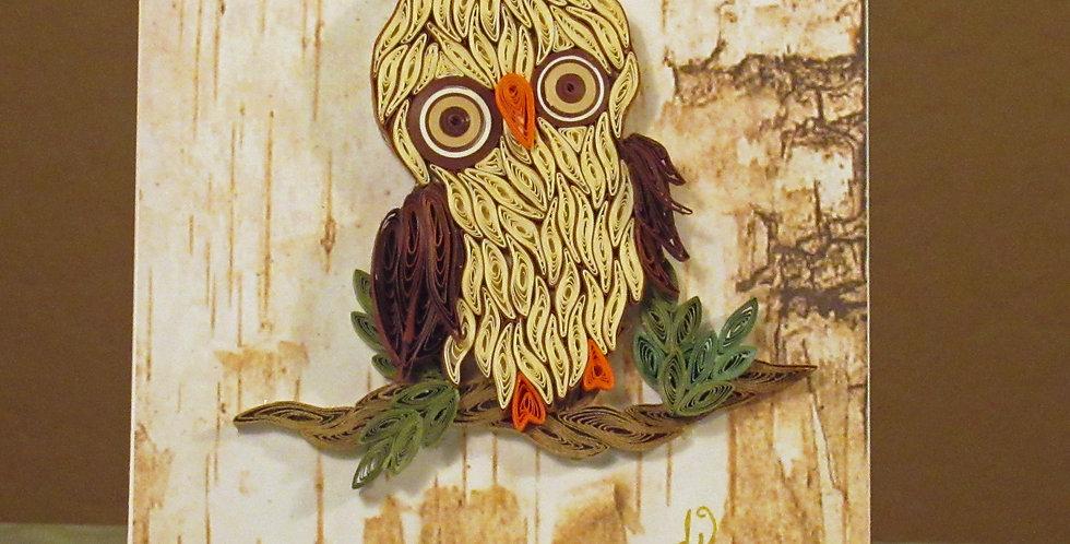 Kookie Owl