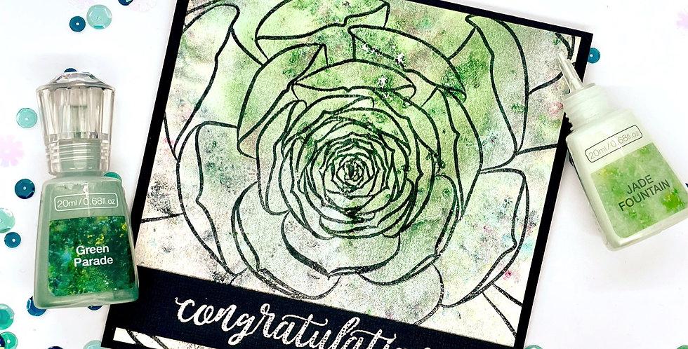 Congratulations Succulent by Darcy
