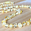 Thumbnail: Mellow Yellow : Baltic Amber Kid's Necklace