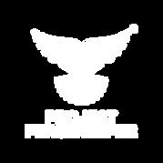 Project Peacekeeper Logo