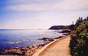 Shore Path in Bar Harbor