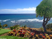 Hawaii Scenic Overlook