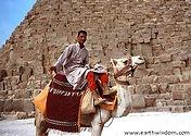 Camel guy