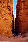 Navajo Loop at Bryce Canyon in Utah
