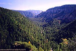 Oak Creek Canyon north of Sedona, Arizona