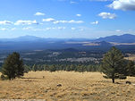 Open field at Flagstaff, Arizona