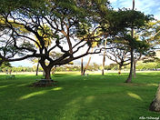 Park near Diamond Head