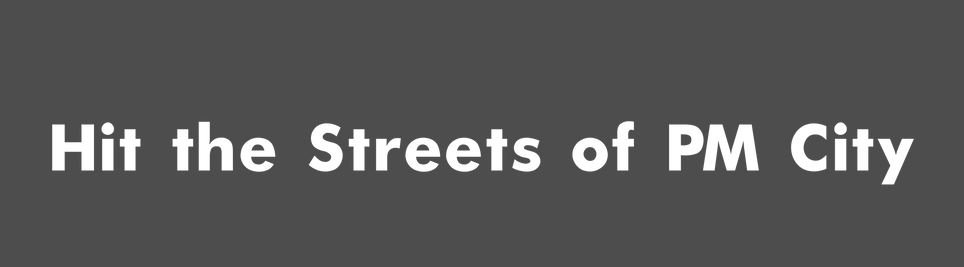 Streets of pm city.png