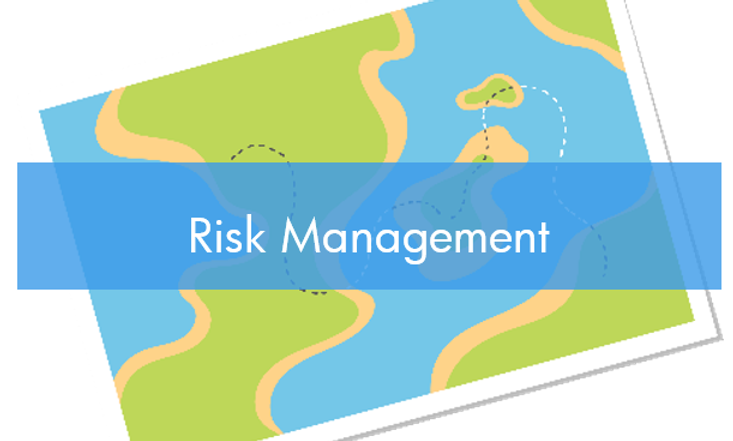 Project Risk Management