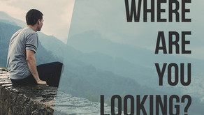 Where are you looking?