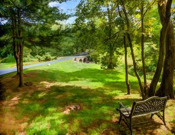bench view.jpg