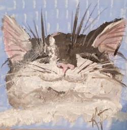 kitty smile