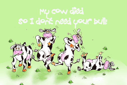 My Cows