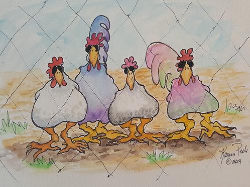 Moffia Chickens