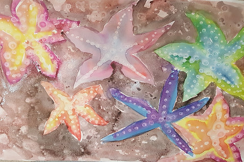 Star Fish Fun