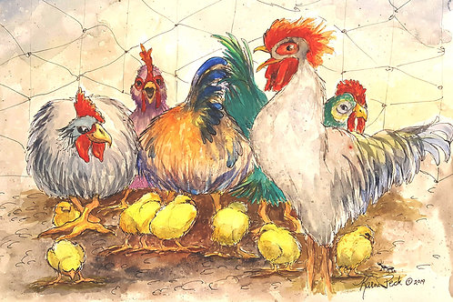 White Rooster and Family