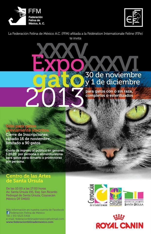 XXXV & XXXVI EXPO GATO 2013