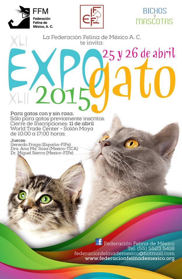 XLI & XLII EXPO GATO 2015