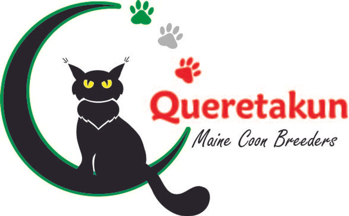 MX* Quereta
