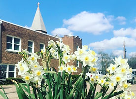 Church Lilies.jpg