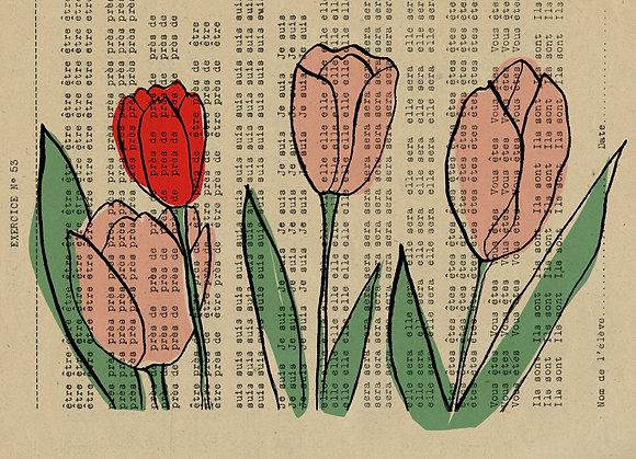 Carte tulipes été 2020