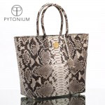 pytonium- tote with logo